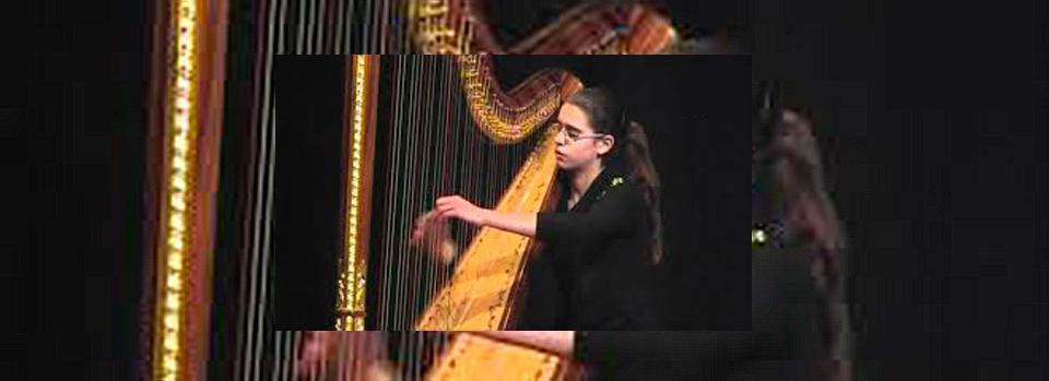 Noelia Cotuna (arpa)