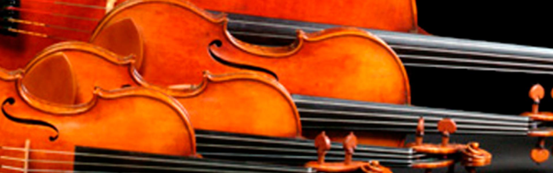 Cenitt String Quartet. Cuarteto de cuerda